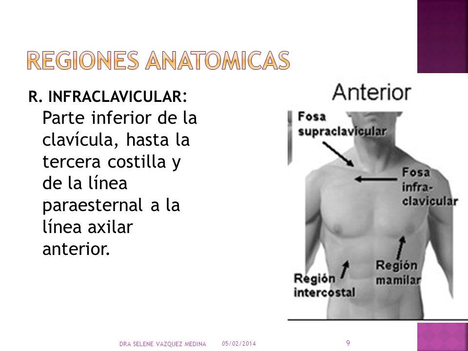 R. INFRACLAVICULAR : Parte inferior de la clavícula, hasta la tercera costilla y de la línea paraesternal a la línea axilar anterior. 05/02/2014 9 DRA