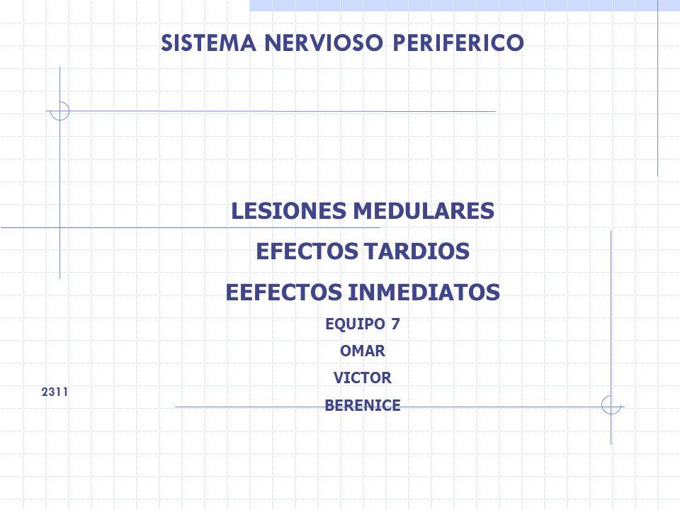 SISTEMA NERVIOSO PERIFERICO 2311 LESIONES MEDULARES EFECTOS TARDIOS EEFECTOS INMEDIATOS EQUIPO 7 OMAR VICTOR BERENICE
