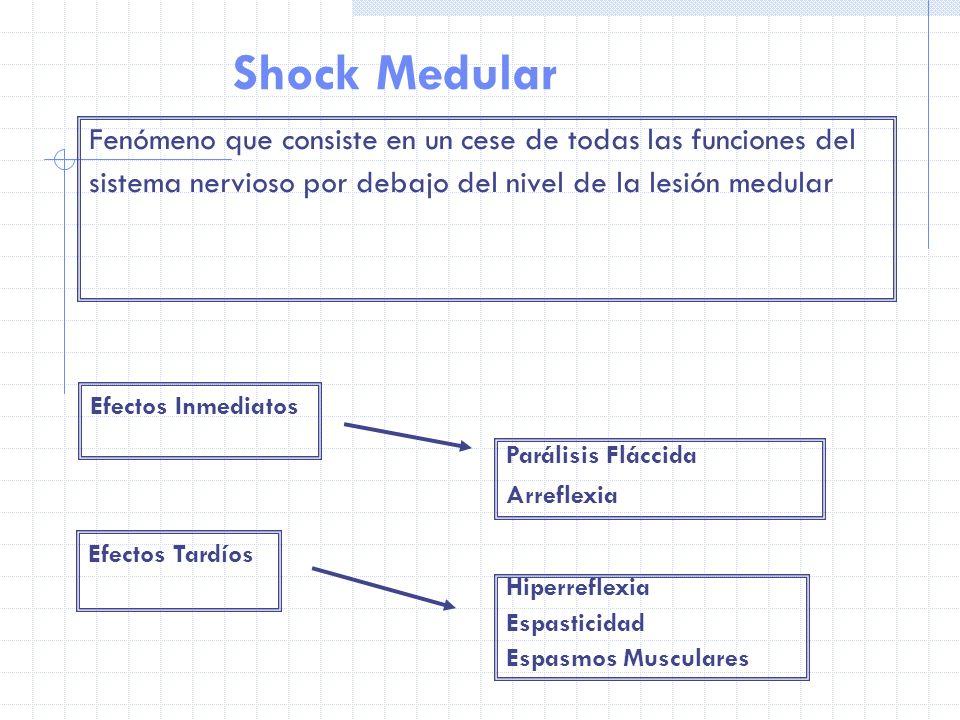 Shock Medular Fenómeno que consiste en un cese de todas las funciones del sistema nervioso por debajo del nivel de la lesión medular Efectos Inmediato