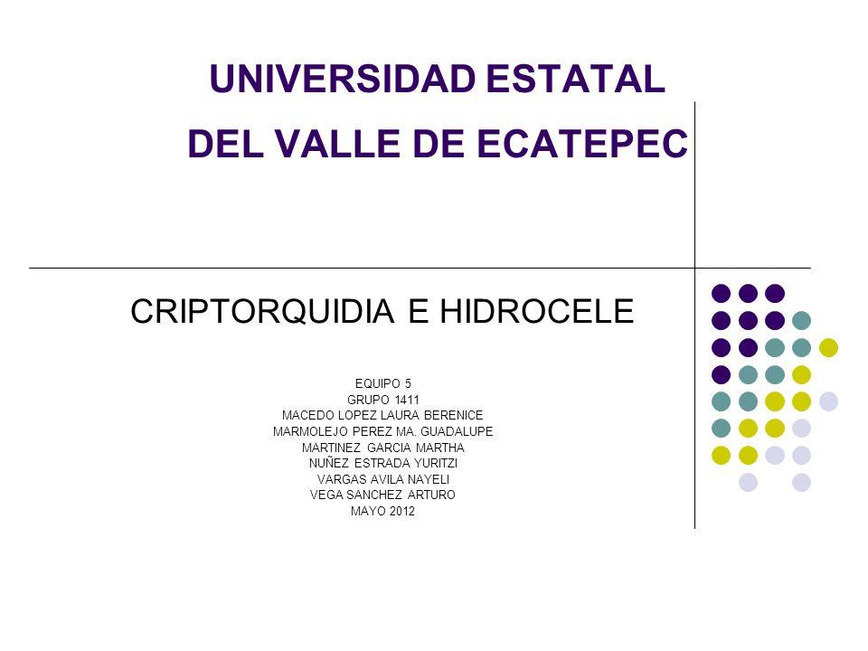 UNIVERSIDAD ESTATAL DEL VALLE DE ECATEPEC CRIPTORQUIDIA E HIDROCELE EQUIPO 5 GRUPO 1411 MACEDO LOPEZ LAURA BERENICE MARMOLEJO PEREZ MA. GUADALUPE MART