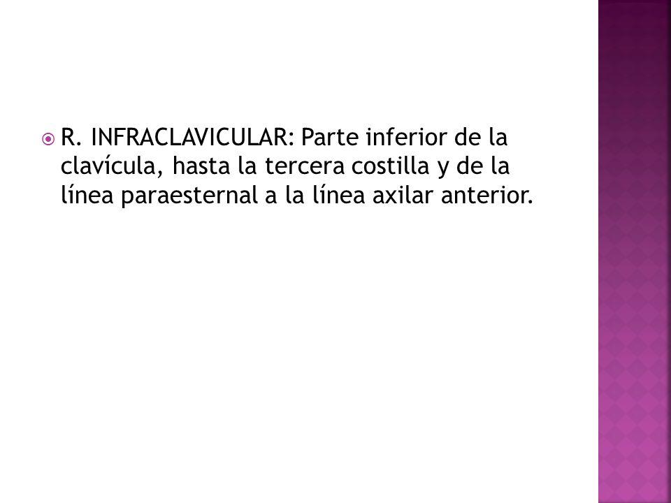 R. INFRACLAVICULAR: Parte inferior de la clavícula, hasta la tercera costilla y de la línea paraesternal a la línea axilar anterior.