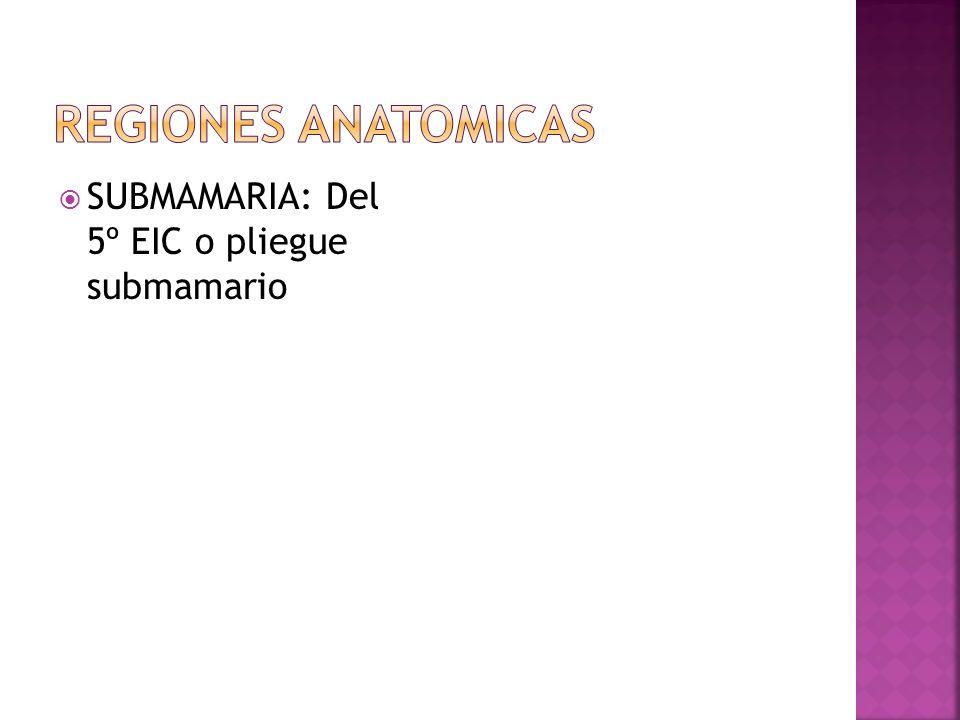 SUBMAMARIA: Del 5º EIC o pliegue submamario