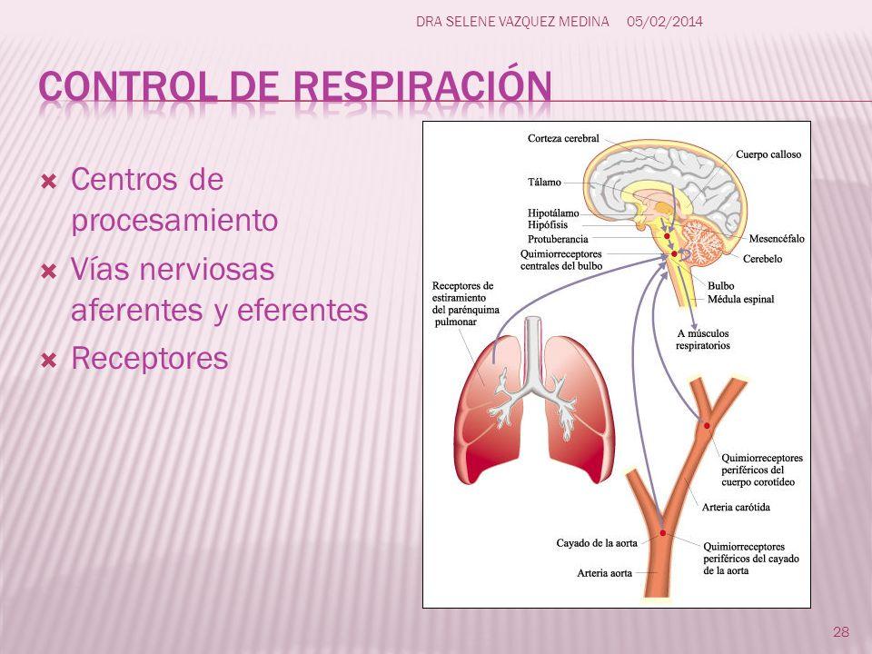 Centros de procesamiento Vías nerviosas aferentes y eferentes Receptores 28 DRA SELENE VAZQUEZ MEDINA05/02/2014