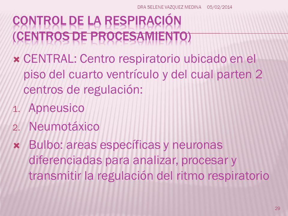 CENTRAL: Centro respiratorio ubicado en el piso del cuarto ventrículo y del cual parten 2 centros de regulación: 1. Apneusico 2. Neumotáxico Bulbo: ar