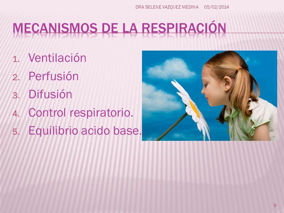 1. Ventilación 2. Perfusión 3. Difusión 4. Control respiratorio. 5. Equilibrio acido base. 9 DRA SELENE VAZQUEZ MEDINA05/02/2014