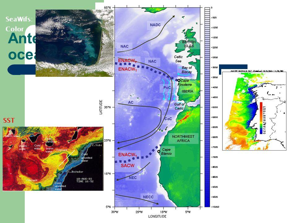 Antecedentes: oceanografía SST SeaWifs: Color