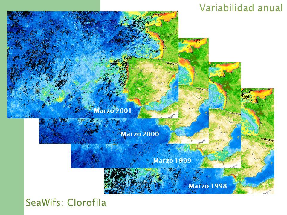 Marzo 1998 Marzo 1999 Marzo 2000 Marzo 2001 SeaWifs: Clorofila Variabilidad anual