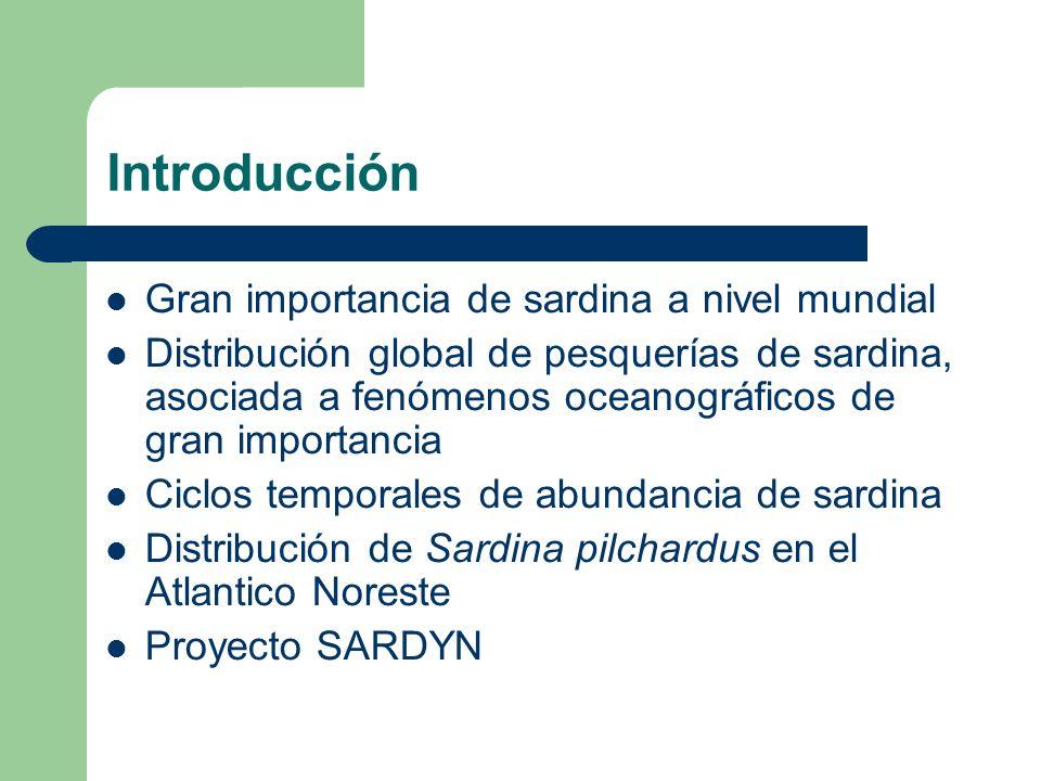 Introducción Gran importancia de sardina a nivel mundial Distribución global de pesquerías de sardina, asociada a fenómenos oceanográficos de gran imp