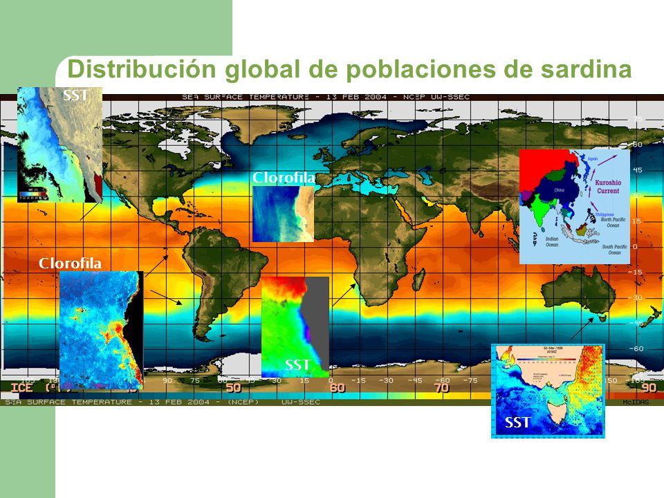 SST Clorofila SST Distribución global de poblaciones de sardina