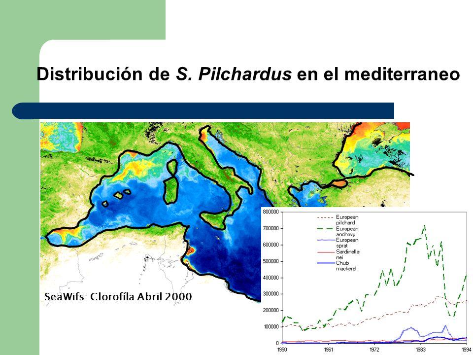 SeaWifs: Clorofíla Abril 2000 Distribución de S. Pilchardus en el mediterraneo