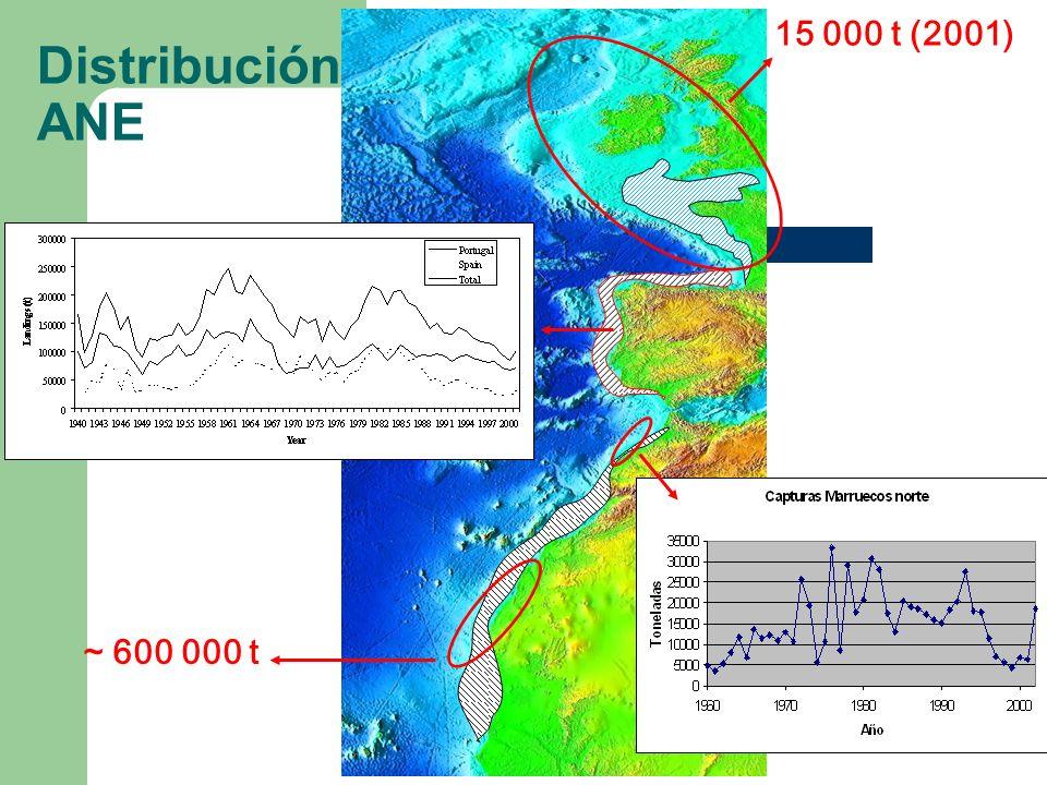 15 000 t (2001) ~ 600 000 t Distribución ANE