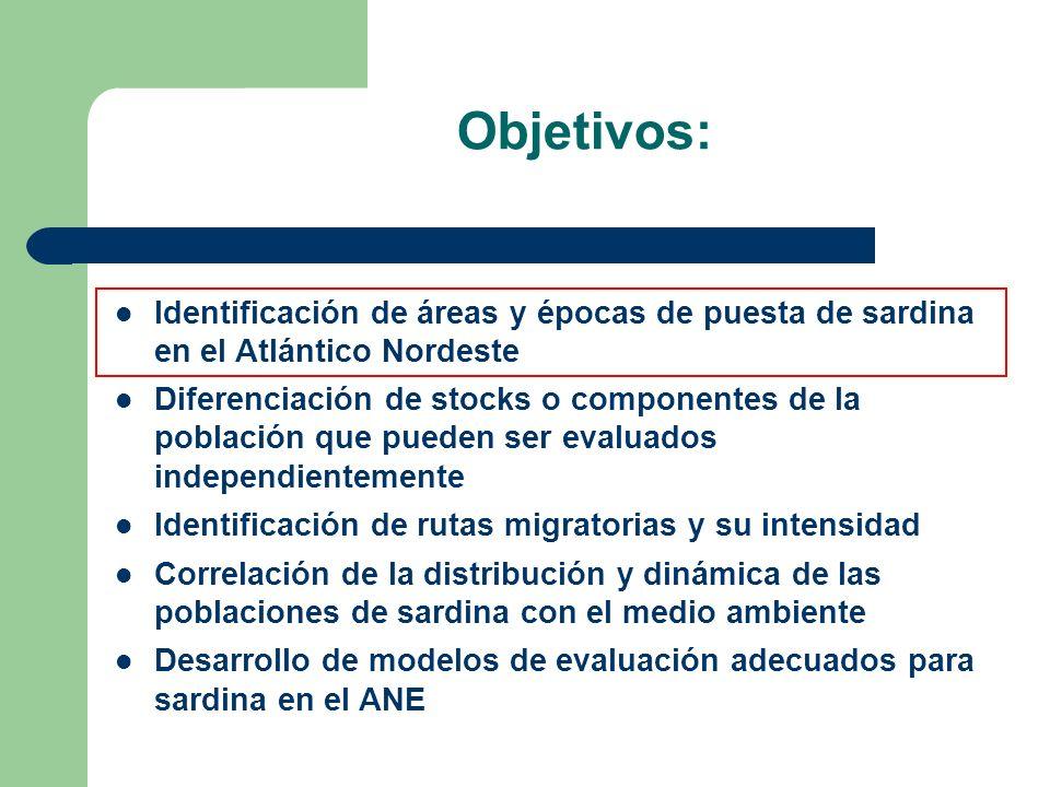 Objetivos: Identificación de áreas y épocas de puesta de sardina en el Atlántico Nordeste Diferenciación de stocks o componentes de la población que p