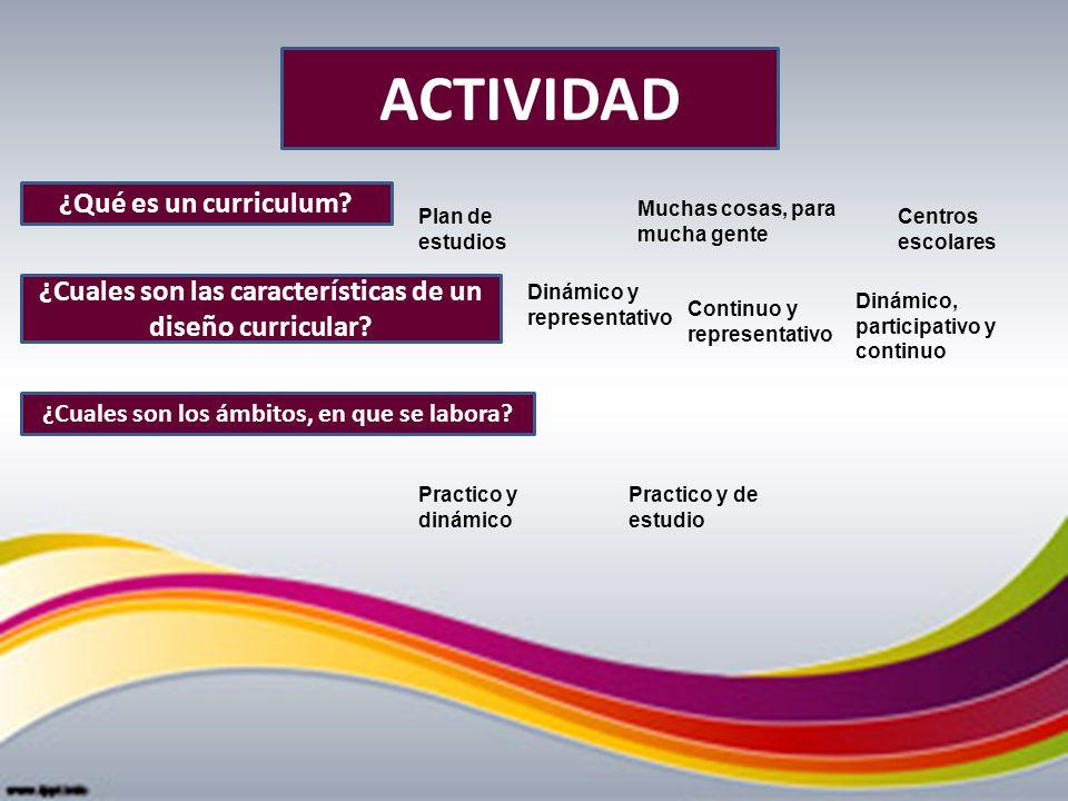 ACTIVIDAD ¿Qué es un curriculum? ¿Cuales son las características de un diseño curricular? ¿Cuales son los ámbitos, en que se labora? Plan de estudios