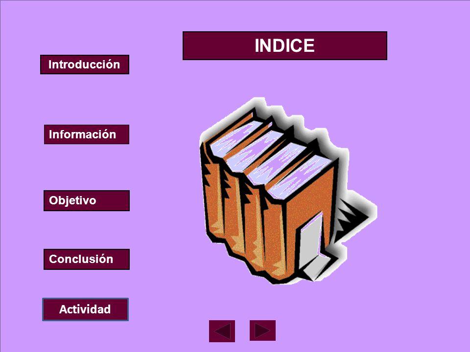 Introducción Información Objetivo Conclusión INDICE Actividad