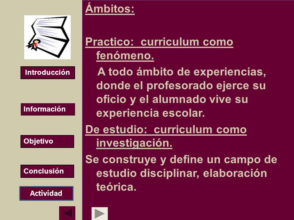 Ámbitos: Practico: curriculum como fenómeno. A todo ámbito de experiencias, donde el profesorado ejerce su oficio y el alumnado vive su experiencia es