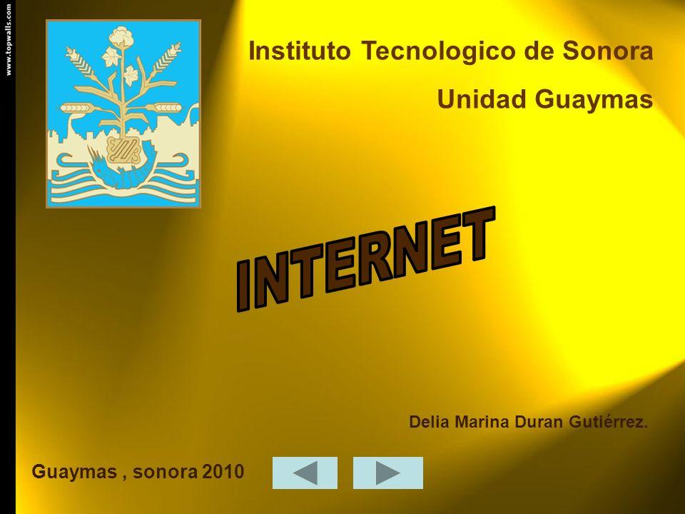 Instituto Tecnologico de Sonora Unidad Guaymas Guaymas, sonora 2010 Delia Marina Duran Gutiérrez.