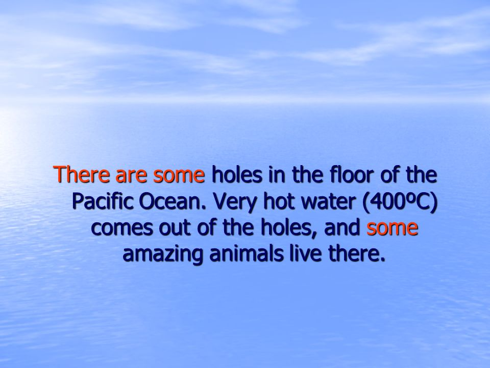 There are some holes in the floor of the Pacific Ocean. Very hot water (400ºC) comes out of the holes, and some amazing animals live there.
