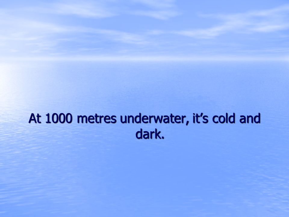 At 1000 metres underwater, its cold and dark.