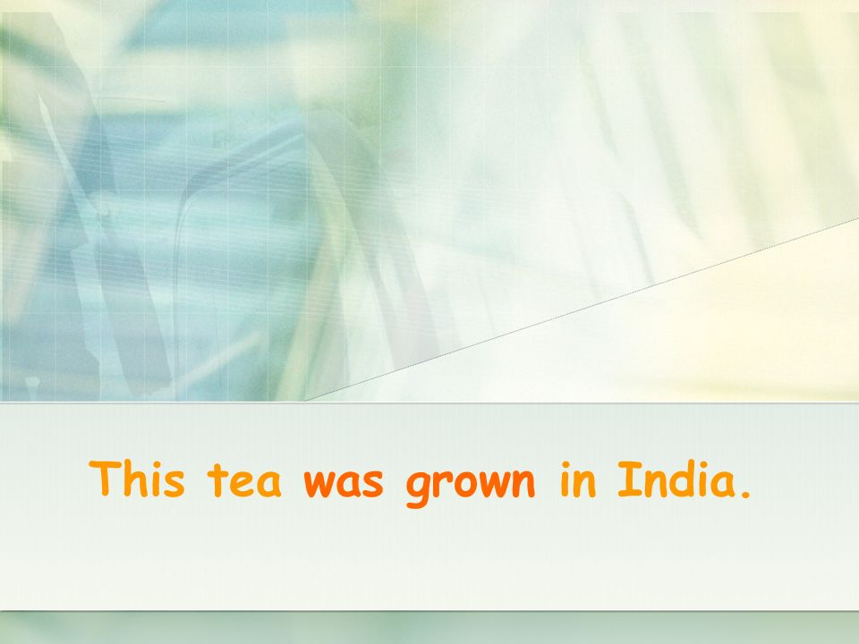This tea was grown in India.