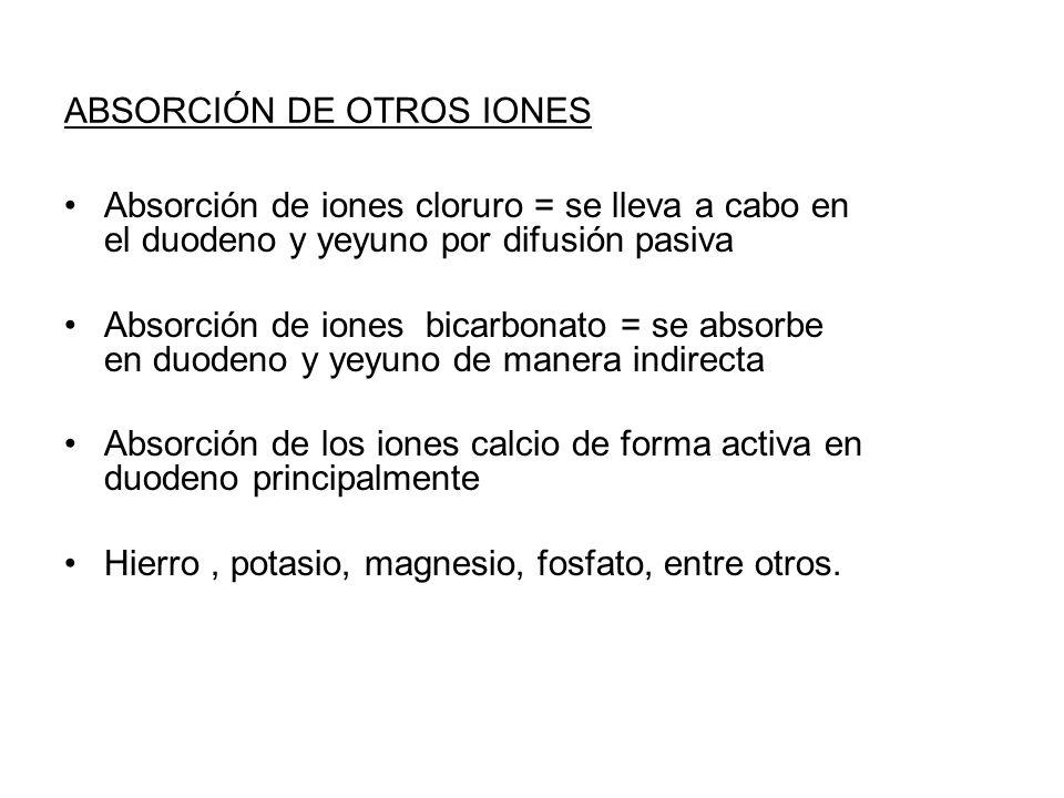 ABSORCIÓN DE OTROS IONES Absorción de iones cloruro = se lleva a cabo en el duodeno y yeyuno por difusión pasiva Absorción de iones bicarbonato = se a