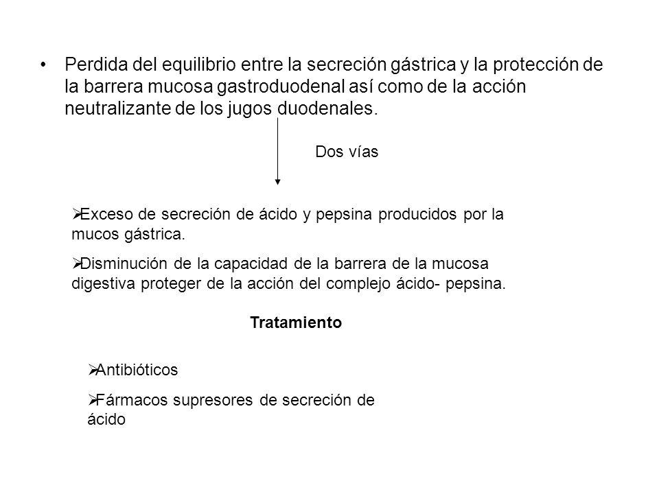 Perdida del equilibrio entre la secreción gástrica y la protección de la barrera mucosa gastroduodenal así como de la acción neutralizante de los jugo