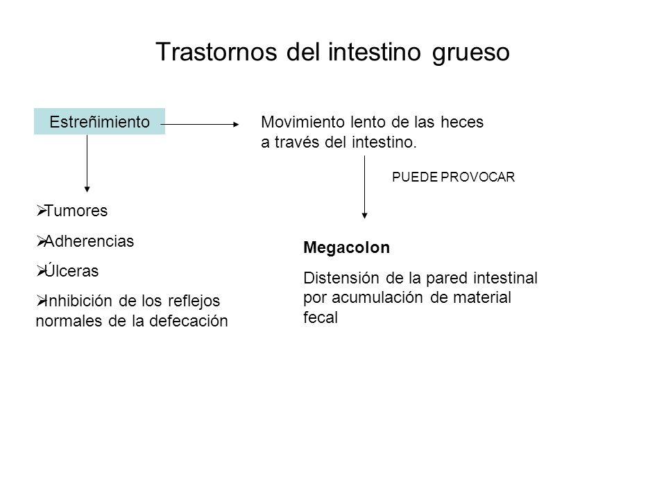 Trastornos del intestino grueso EstreñimientoMovimiento lento de las heces a través del intestino. Tumores Adherencias Úlceras Inhibición de los refle