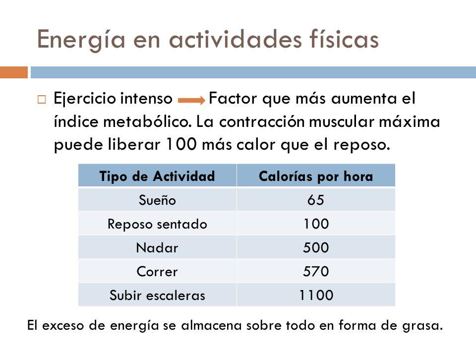 Energía en actividades físicas Ejercicio intenso Factor que más aumenta el índice metabólico. La contracción muscular máxima puede liberar 100 más cal