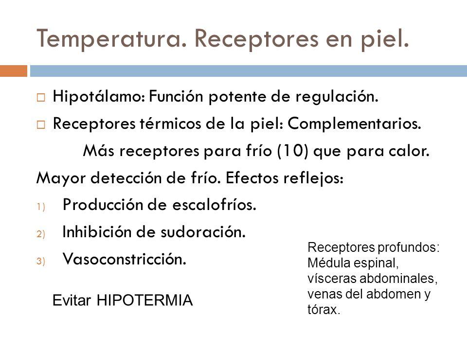 Temperatura. Receptores en piel. Hipotálamo: Función potente de regulación. Receptores térmicos de la piel: Complementarios. Más receptores para frío