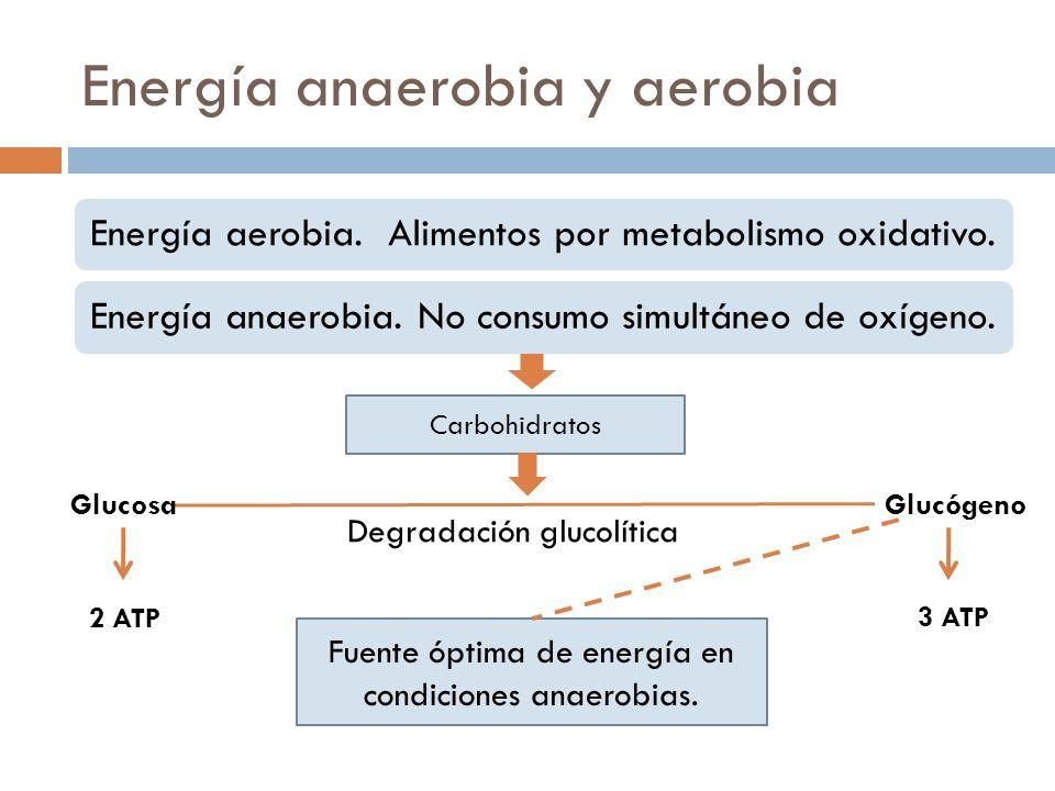 Energía anaerobia y aerobia Energía aerobia. Alimentos por metabolismo oxidativo.Energía anaerobia. No consumo simultáneo de oxígeno. Carbohidratos De