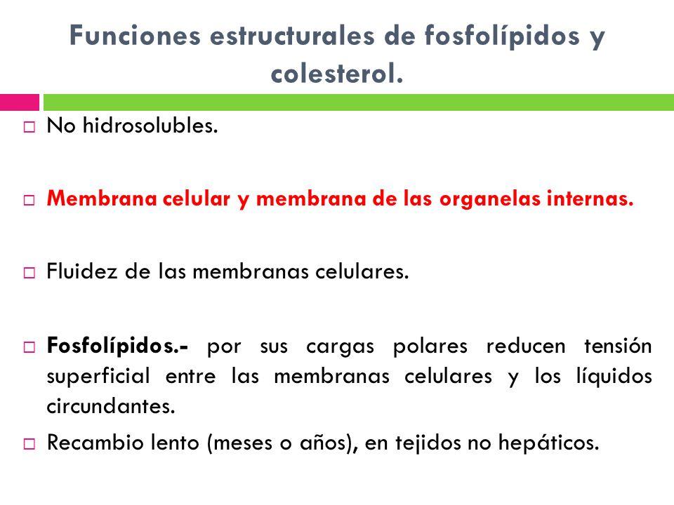 Funciones estructurales de fosfolípidos y colesterol. No hidrosolubles. Membrana celular y membrana de las organelas internas. Fluidez de las membrana