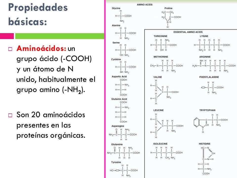 Propiedades básicas: Aminoácidos: un grupo ácido (-COOH) y un átomo de N unido, habitualmente el grupo amino (-NH 2 ). Son 20 aminoácidos presentes en