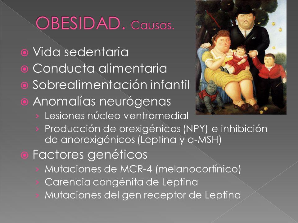 Vida sedentaria Conducta alimentaria Sobrealimentación infantil Anomalías neurógenas Lesiones núcleo ventromedial Producción de orexigénicos (NPY) e i