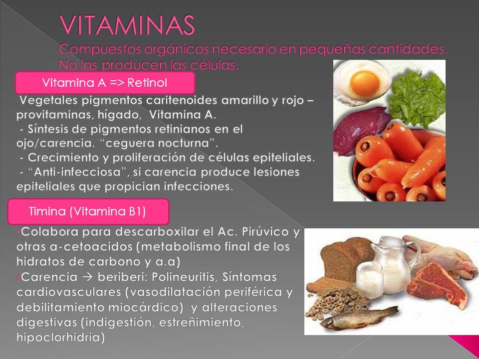 Vitamina A => Retinol Timina (Vitamina B1)