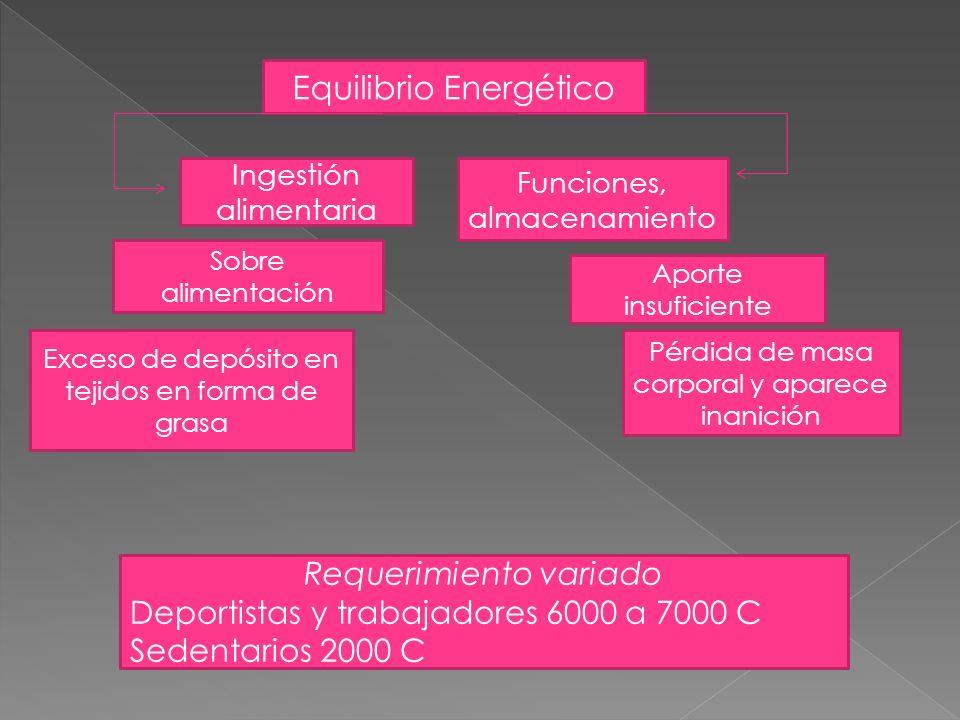 Equilibrio Energético Ingestión alimentaria Sobre alimentación Exceso de depósito en tejidos en forma de grasa Funciones, almacenamiento Aporte insufi