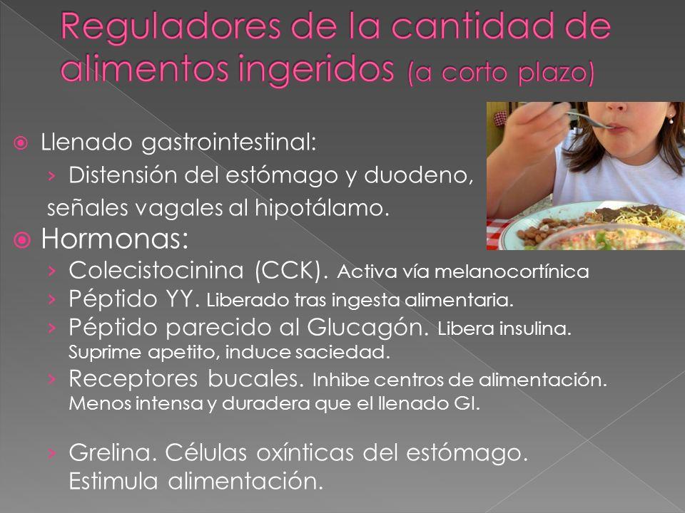 Llenado gastrointestinal: Distensión del estómago y duodeno, señales vagales al hipotálamo. Hormonas: Colecistocinina (CCK). Activa vía melanocortínic