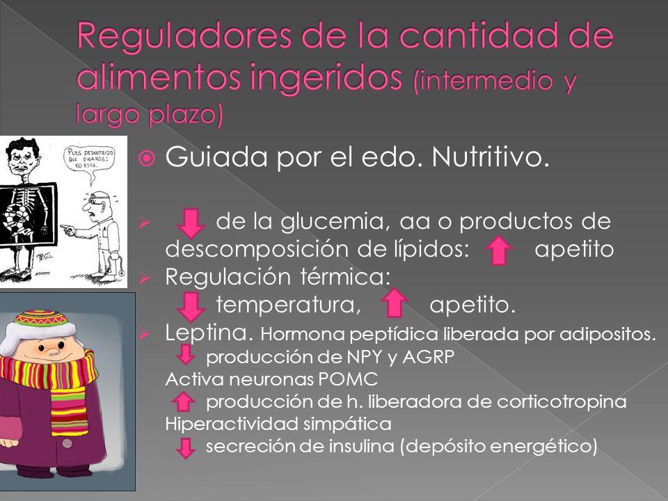 Guiada por el edo. Nutritivo. de la glucemia, aa o productos de descomposición de lípidos: apetito Regulación térmica: temperatura, apetito. Leptina.