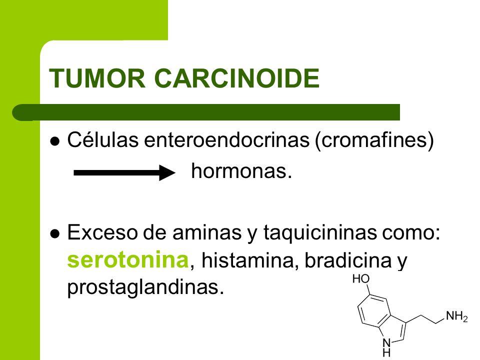 TUMOR CARCINOIDE Células enteroendocrinas (cromafines) hormonas. Exceso de aminas y taquicininas como: serotonina, histamina, bradicina y prostaglandi