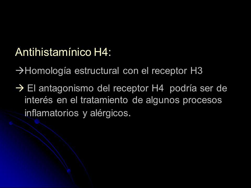 Antihistamínico H4: Homología estructural con el receptor H3 El antagonismo del receptor H4 podría ser de interés en el tratamiento de algunos proceso