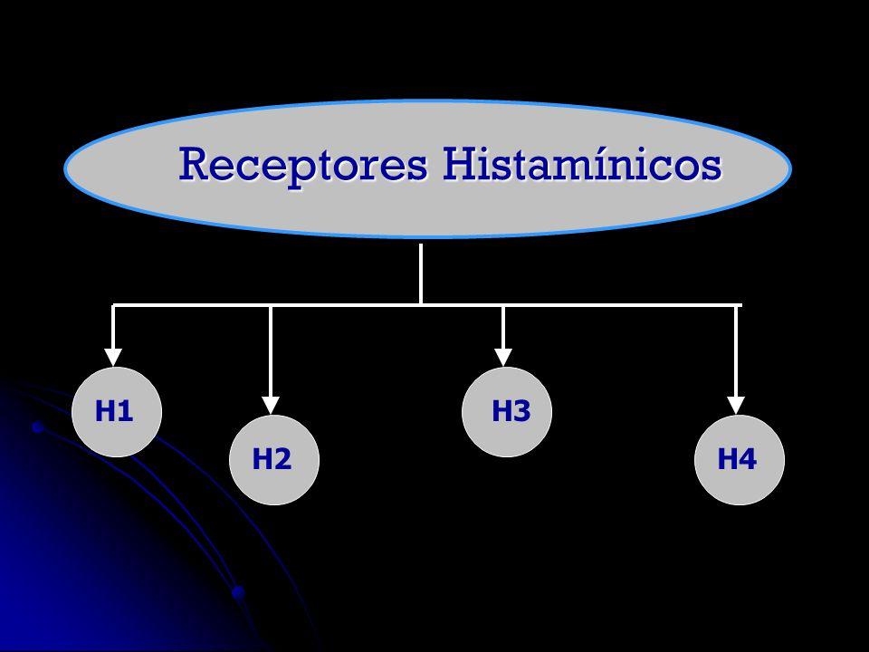 Antihistamínico H3: Tioperamida Tioperamida Benpropita Benpropita Ciproxifano Ciproxifano Proxifano Proxifano Derivado Imidazólico Antihistamínicos H3 Agonistas inversos Acción broncoconstrictora de H1 es antagonizada por una reacción broncodilatadora H3