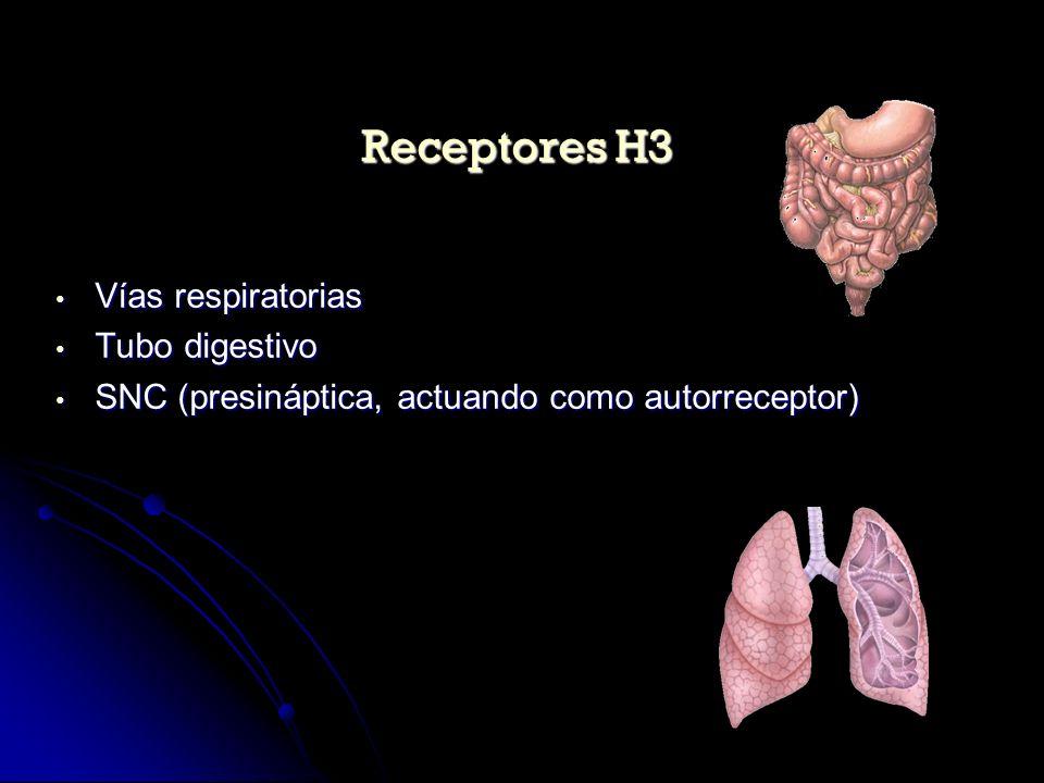 Vías respiratorias Vías respiratorias Tubo digestivo Tubo digestivo SNC (presináptica, actuando como autorreceptor) SNC (presináptica, actuando como a