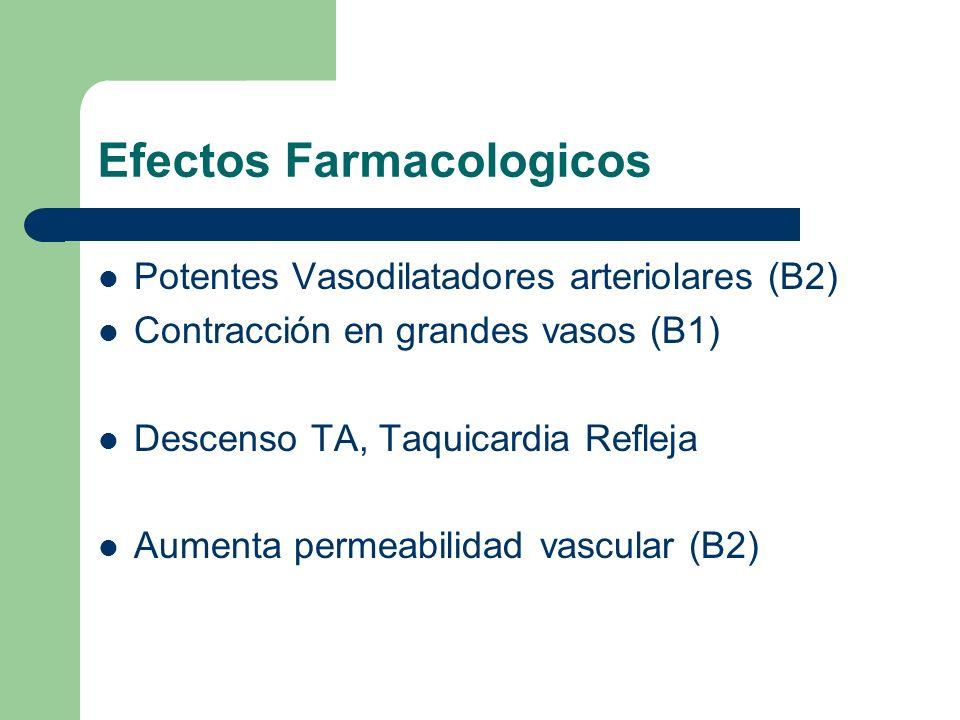 Efectos Farmacologicos Potentes Vasodilatadores arteriolares (B2) Contracción en grandes vasos (B1) Descenso TA, Taquicardia Refleja Aumenta permeabil