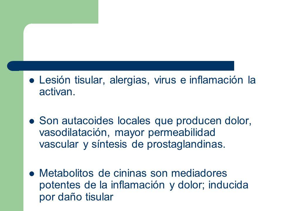 Cininas Péptidos derivados de los cininógenos por acción de calicreinas (plasmática y tisular) Bradicinina (nonapéptido) Calidina (decapéptido) Arg-Pro-Pro-Gli-Fe-Ser-Pro-Fe- Arg