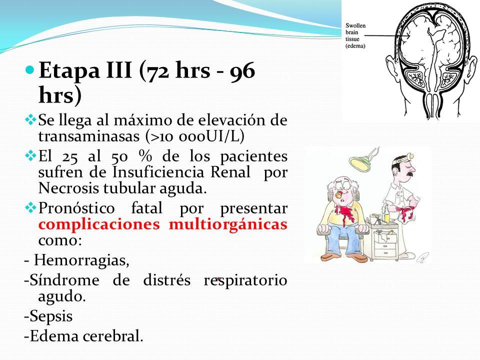 Etapa III (72 hrs - 96 hrs) Se llega al máximo de elevación de transaminasas (>10 000UI/L) El 25 al 50 % de los pacientes sufren de Insuficiencia Rena