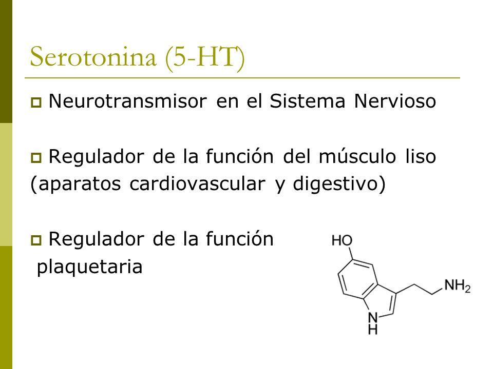 Localización y síntesis Células enterocromafines: - Tracto gastrointestinal Neuronas serotonérgicas del SNC Plaquetas Glándula pineal (precursor de la melatonina)