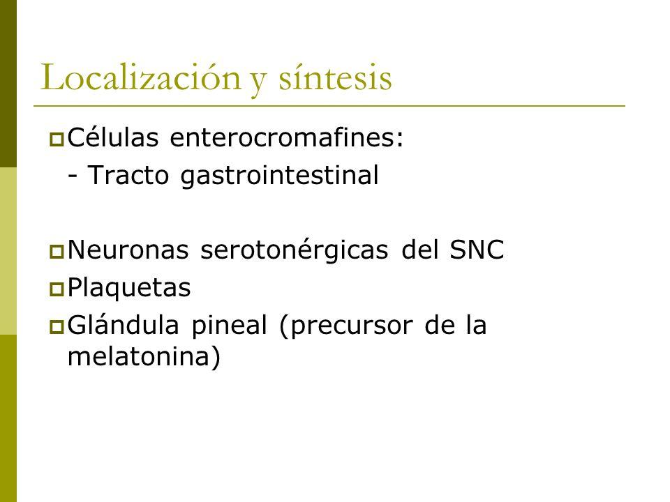 Localización y síntesis Células enterocromafines: - Tracto gastrointestinal Neuronas serotonérgicas del SNC Plaquetas Glándula pineal (precursor de la