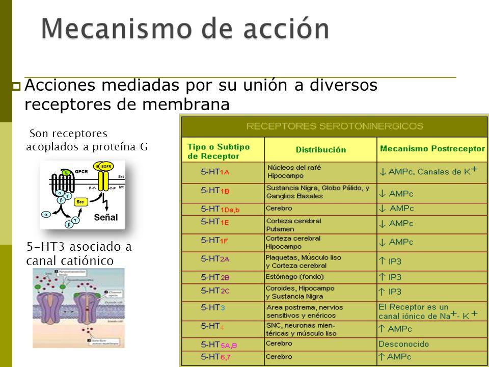 Pizotifeno Semejante a la cirpoheptadina y los antidepresivos imipramínicos Acciones antiserotonínicas y antihistamínicas, ligera act.