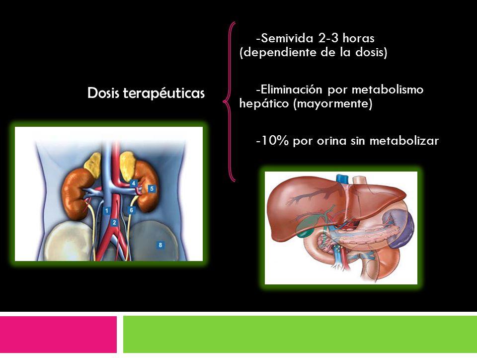 -Semivida 2-3 horas (dependiente de la dosis) -Eliminación por metabolismo hepático (mayormente) -10% por orina sin metabolizar Dosis terapéuticas