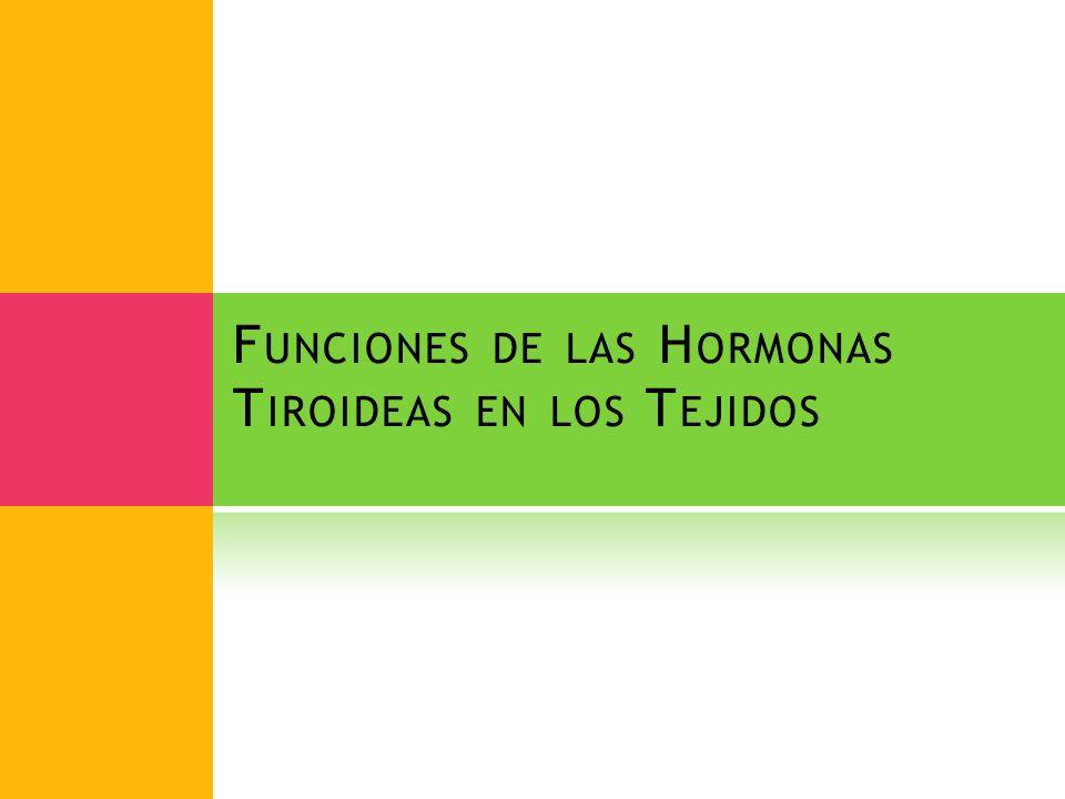 F UNCIONES DE LAS H ORMONAS T IROIDEAS EN LOS T EJIDOS
