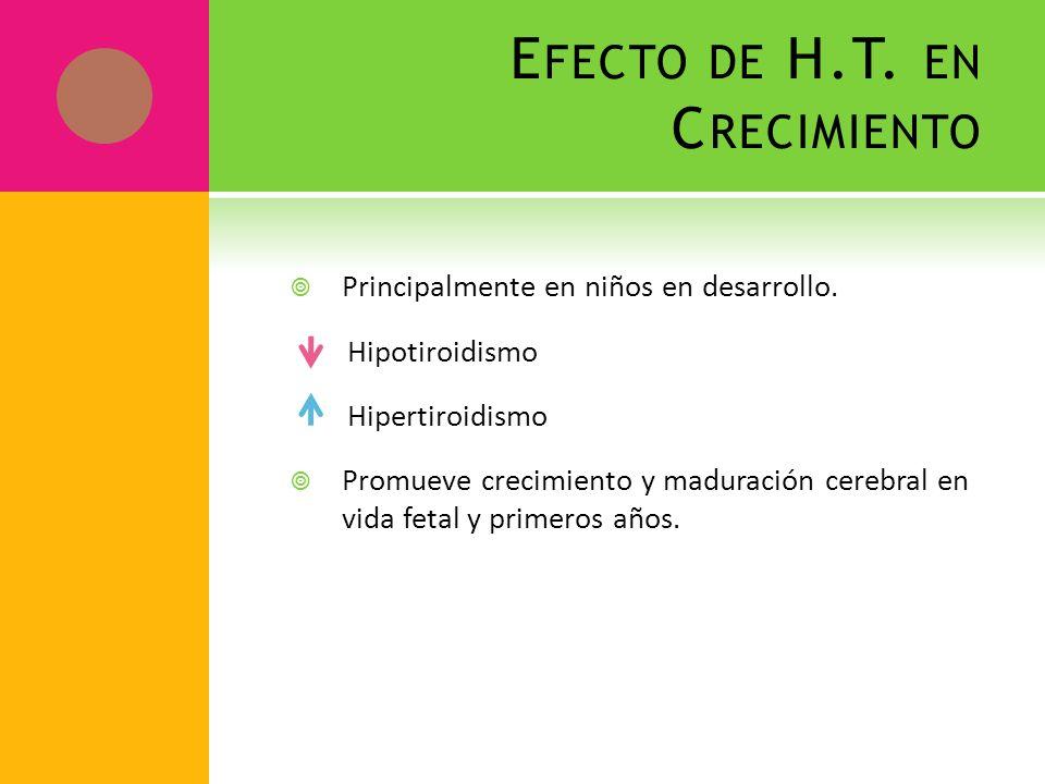E FECTO DE H.T. EN C RECIMIENTO Principalmente en niños en desarrollo. Hipotiroidismo Hipertiroidismo Promueve crecimiento y maduración cerebral en vi