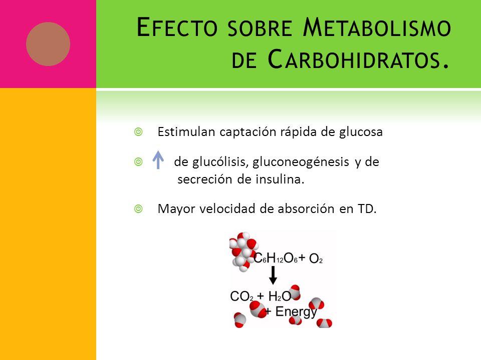 E FECTO SOBRE M ETABOLISMO DE C ARBOHIDRATOS. Estimulan captación rápida de glucosa de glucólisis, gluconeogénesis y de secreción de insulina. Mayor v